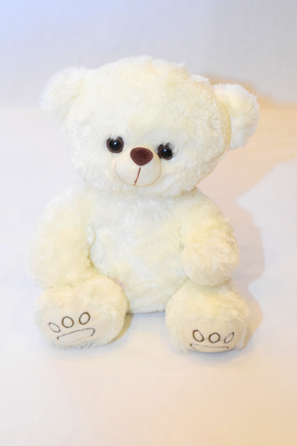 White Teddy Bear 10 inches | Flower shop in Karachi